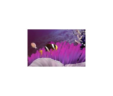 Un aquarium grandeur nature et interactif en HD sur Xbox 360 !
