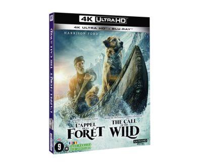 MAJ Visuel : L'Appel de la Forêt officialisé en 4K Ultra HD Blu-ray chez Fox