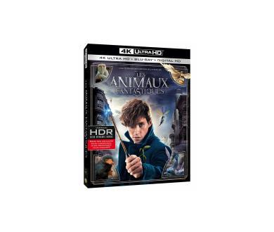 Les Animaux fantastiques - Le monde des Sorciers : -50% sur l'édition 4K Ultra HD Blu-ray