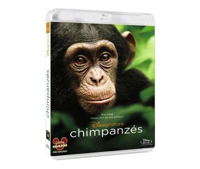 Test Blu-Ray : Chimpanzés